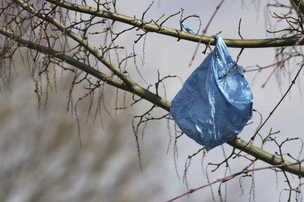 Wind Bags