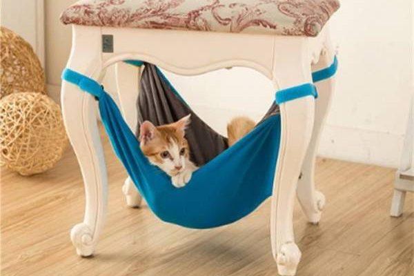 Choix Hamac suspendu d intérieur et hamac de radiateur pour chat pas cher