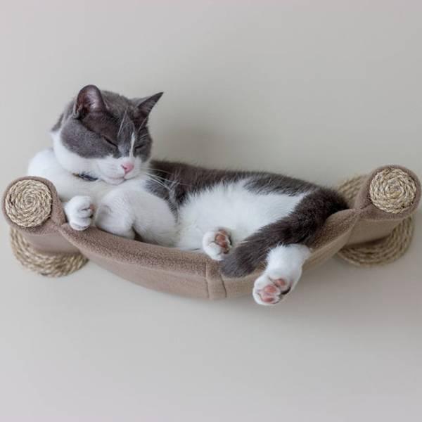 Avis client Hamac fenetre pour chat gifi : hamac jpg