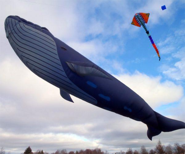 Transat Gonflable Wind Bag