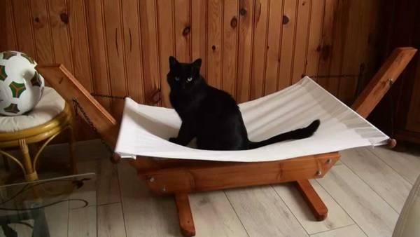Guide Le hamac guadeloupe ou hamac en chaise